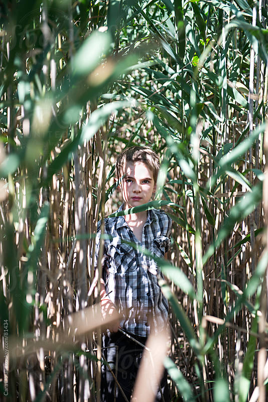Boy stands in the middle of tall grass stalks by Cara Dolan for Stocksy United