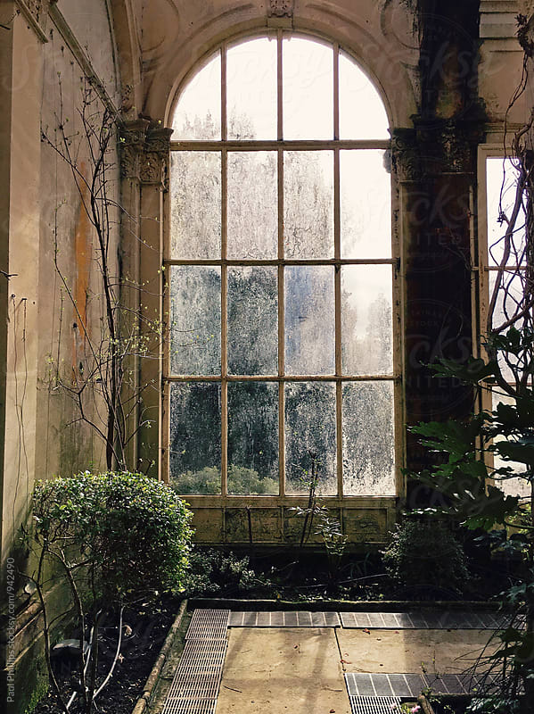 Window of a large Orangery from 1872 by Paul Phillips for Stocksy United