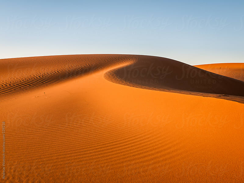 Desert Sand Dunes with Patterns and Lines by Andreas Wonisch for Stocksy United