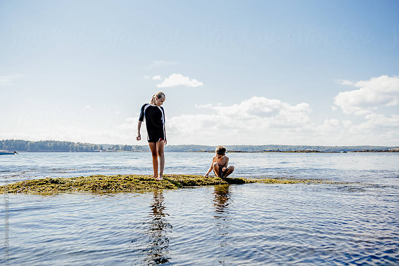 Kids play near the ocean on a seaweed covered rock  by Cara Dolan for Stocksy United