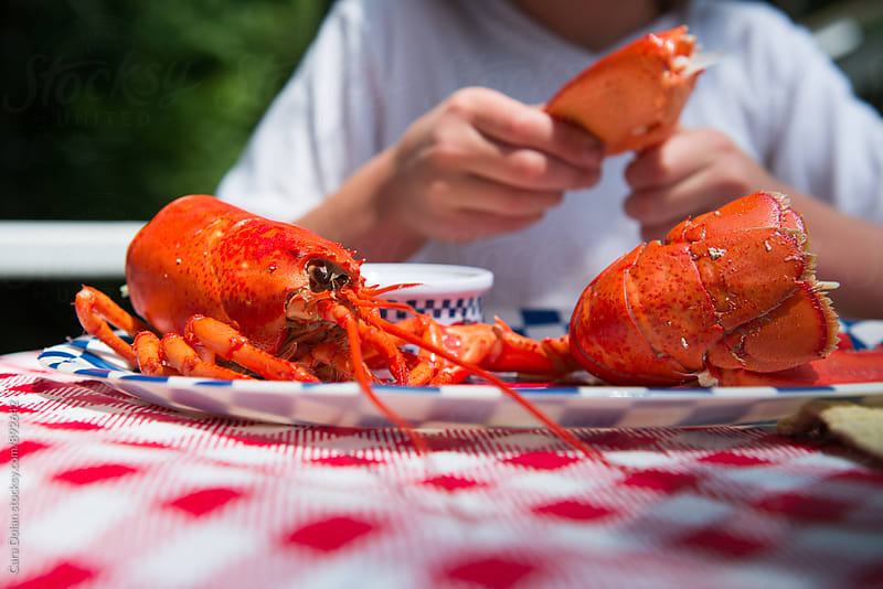 Lobster dinner by Cara Slifka for Stocksy United
