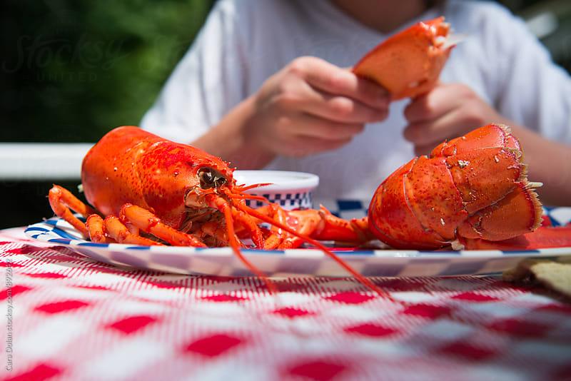 Lobster dinner by Cara Dolan for Stocksy United