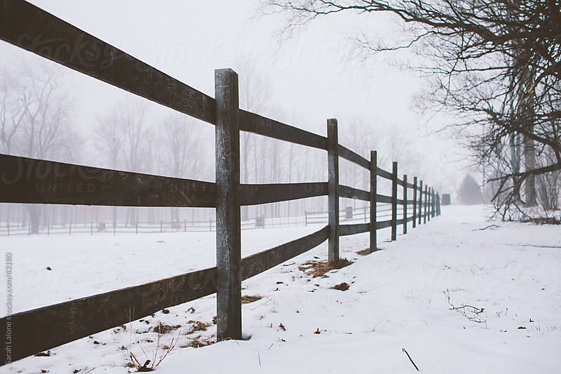 Horse fence receding into the horizon on a farm with fog. by Sarah Lalone for Stocksy United