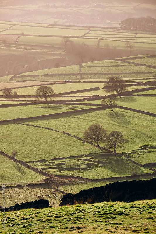 Hazy light at sunset over a vallery of fields. Derbyshire, UK. by Liam Grant for Stocksy United