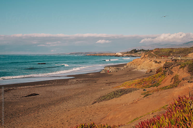 California Coast  by Austin Lord for Stocksy United