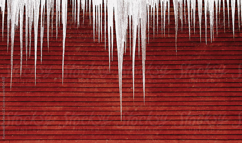 Icicles on Vermont Barn by Raymond Forbes LLC for Stocksy United