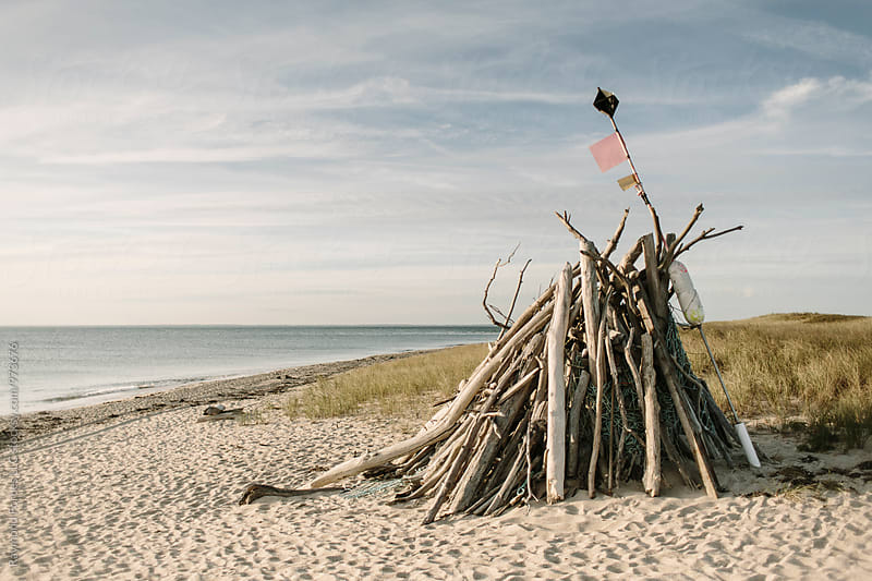 Block Island Driftwood by Raymond Forbes LLC for Stocksy United