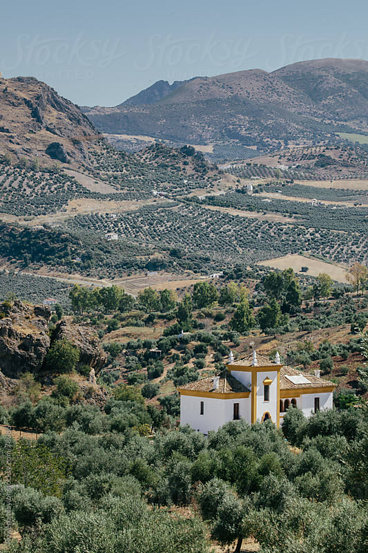 Looking out over moutain and Olive Grove region in Spain by Rowena Naylor for Stocksy United