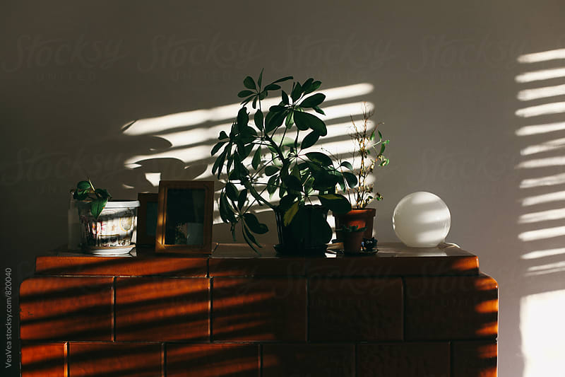 Details in the room on a natural light by Marija Mandic for Stocksy United