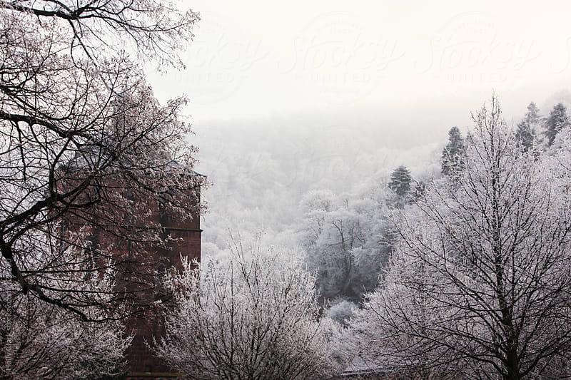 Hidden castle in a German winter, Heidelberg, Baden-Württemberg by Holly Clark for Stocksy United