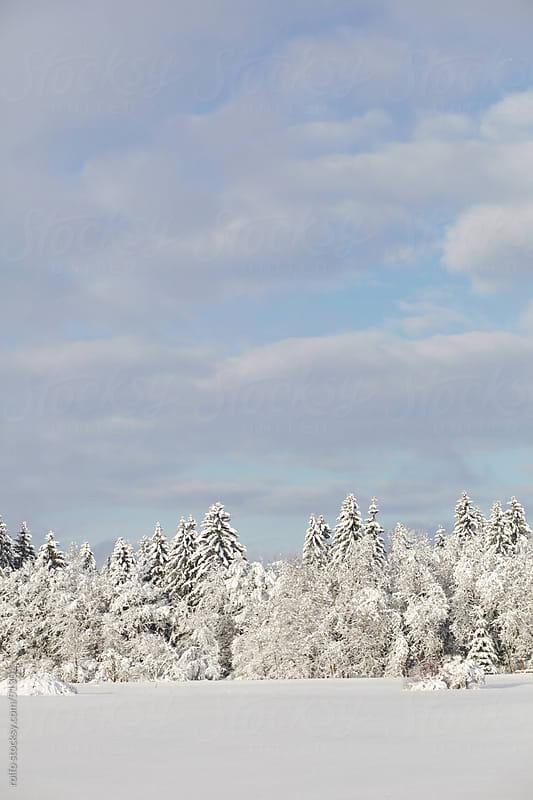 winter idyllic landscape snowy sky by rolfo for Stocksy United