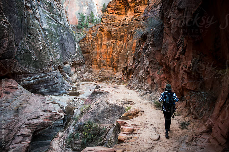 Hiker Walking Through Vibrant Canyon Trail by MEGHAN PINSONNEAULT for Stocksy United