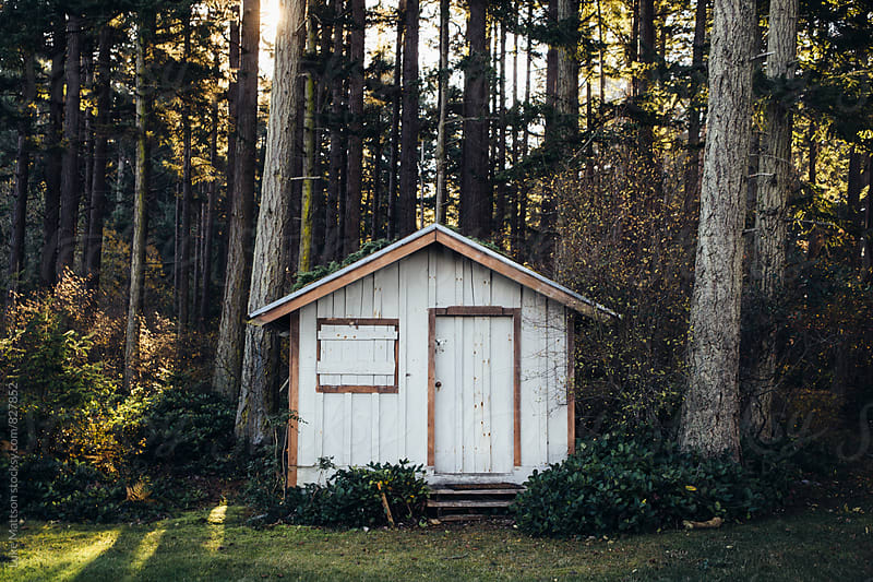 White Tool Shed In Woods Of Forest by Luke Mattson for Stocksy United