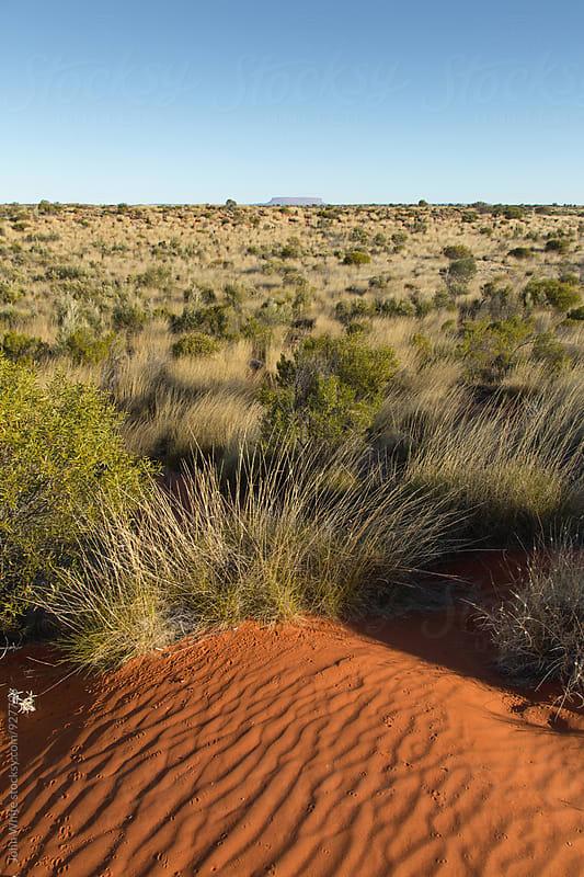 Red sand of central Australia. by John White for Stocksy United