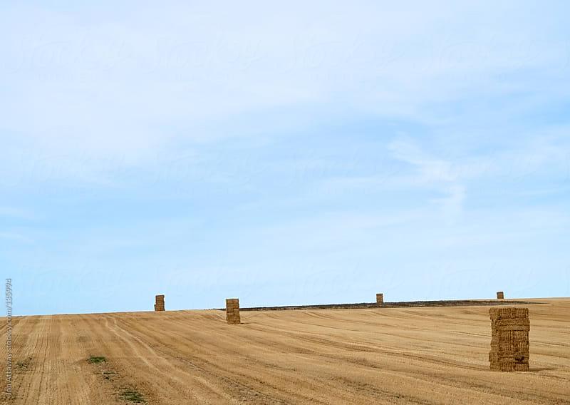 Haystacks in a field by Jon Attaway for Stocksy United