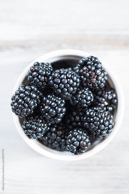 Blackberries in white a bowl . by Alexey Kuzma for Stocksy United