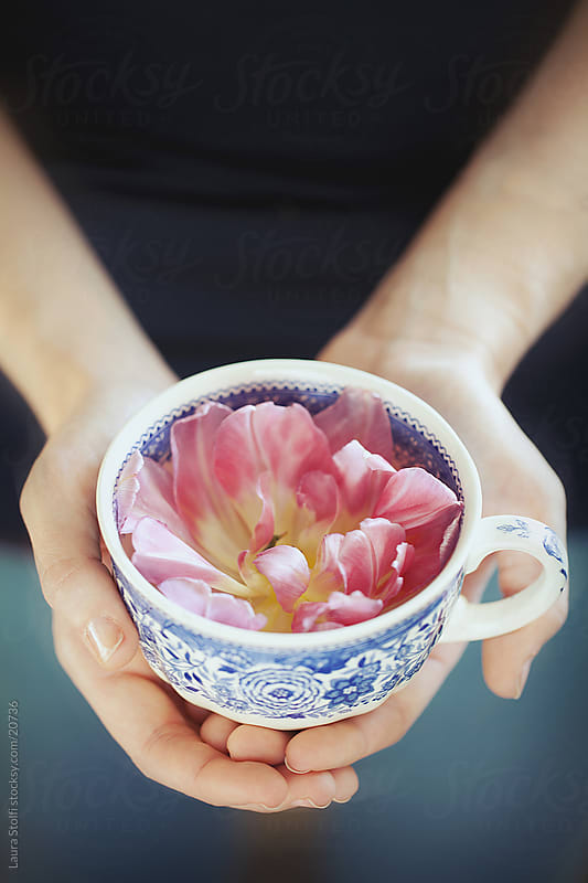 Homemade spa treatment: girl hands hold a cup with fresh water and flower in it by Laura Stolfi for Stocksy United