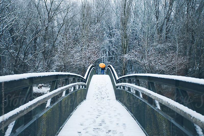 Bridge in winter by CACTUS Blai Baules for Stocksy United