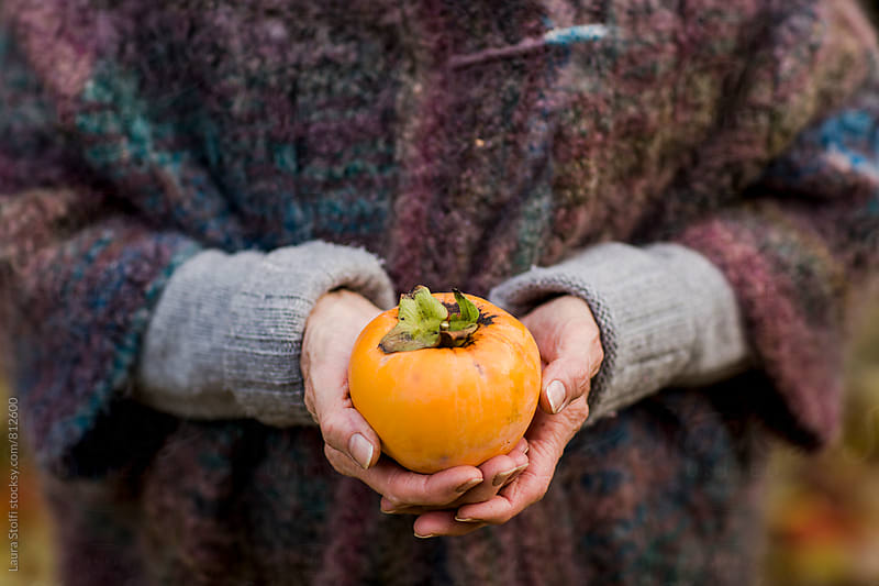 Woman with ripe persimmom in her hands by Laura Stolfi for Stocksy United