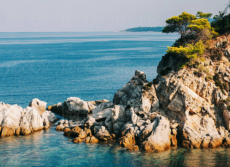 Rocks And Trees Along The Shore by Borislav Zhuykov for Stocksy United