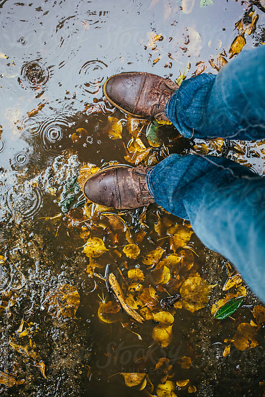 Brown boots wet with rain in a puddle with yellow breech leaves  by Ivo de Bruijn for Stocksy United