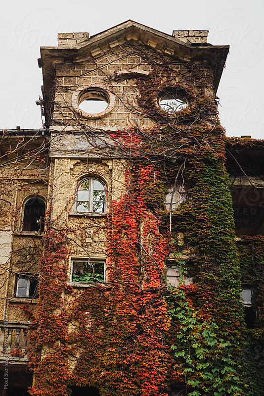 Old hospital facade by Pixel Stories for Stocksy United
