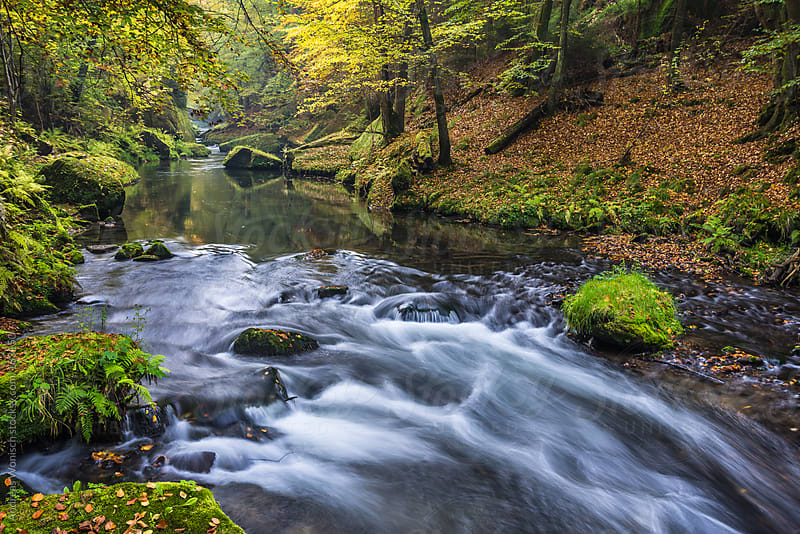 Fall Creek in the Kamnitz Gorge by Andreas Wonisch for Stocksy United