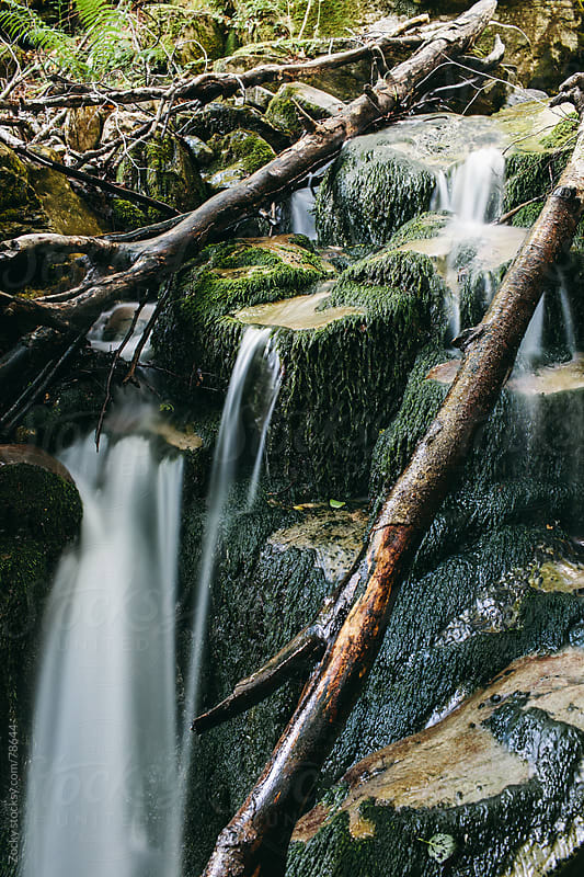 Waterfall - Smoky Mountain National Park by Zocky for Stocksy United