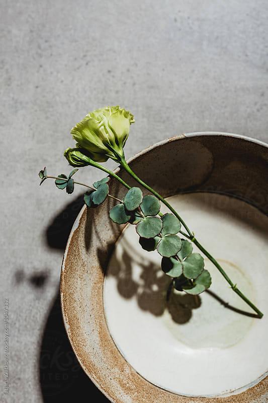 Artistic ceramic bowl with flower and eucalyptus by Tatjana Zlatkovic for Stocksy United