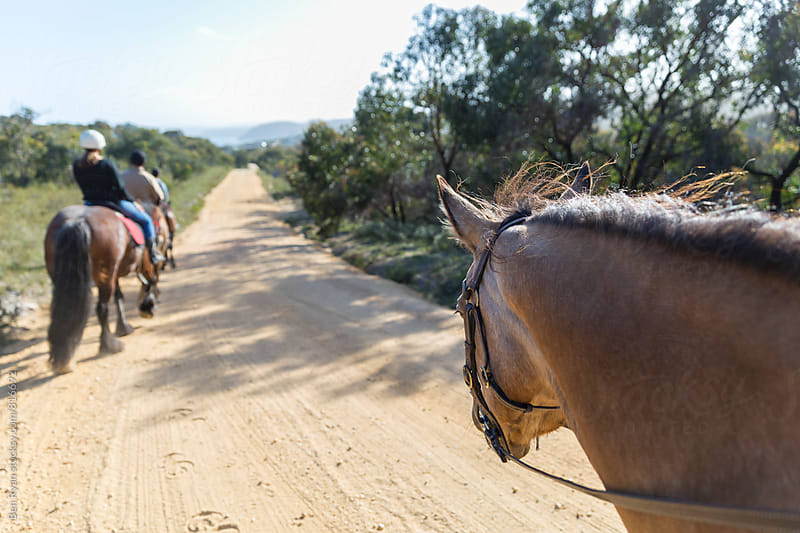 Rider eye view of horse head and other rider and horse on gravel road by Ben Ryan for Stocksy United