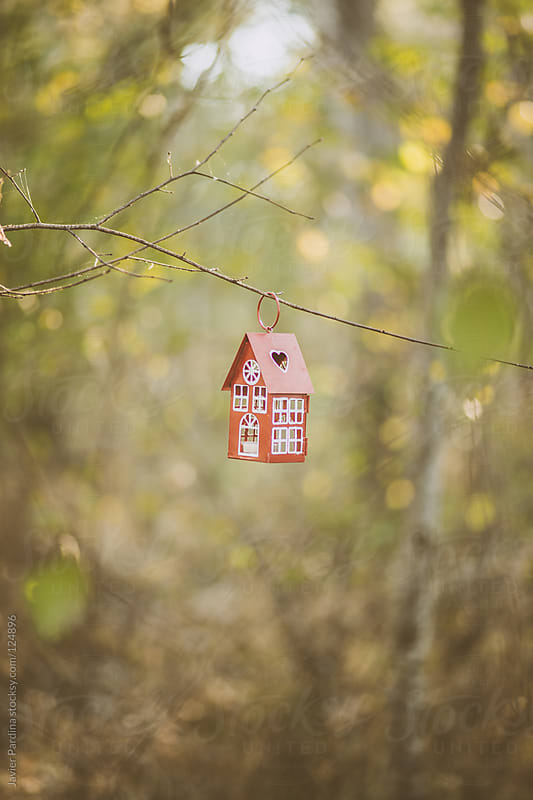 small house hanging on a tree branch by Javier Pardina for Stocksy United