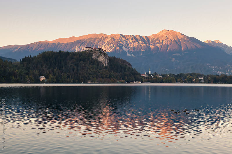 Lake Bled in Slovenia at Sunset by Tom Uhlenberg for Stocksy United