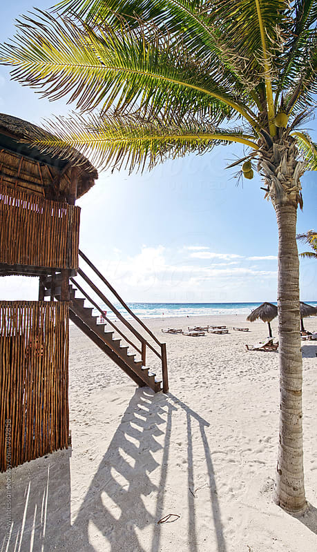 Tropical beach with palm and life guard tower by Per Swantesson for Stocksy United