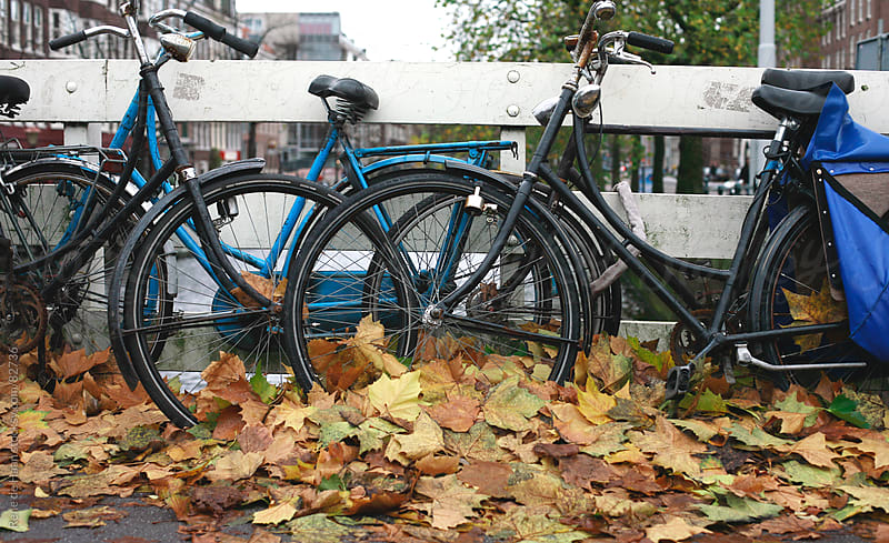 bikes in autumn leaves by Rene de Haan for Stocksy United