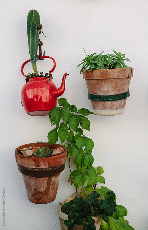 Potted plants mounted on a wall on an Andalucian house. by kkgas for Stocksy United