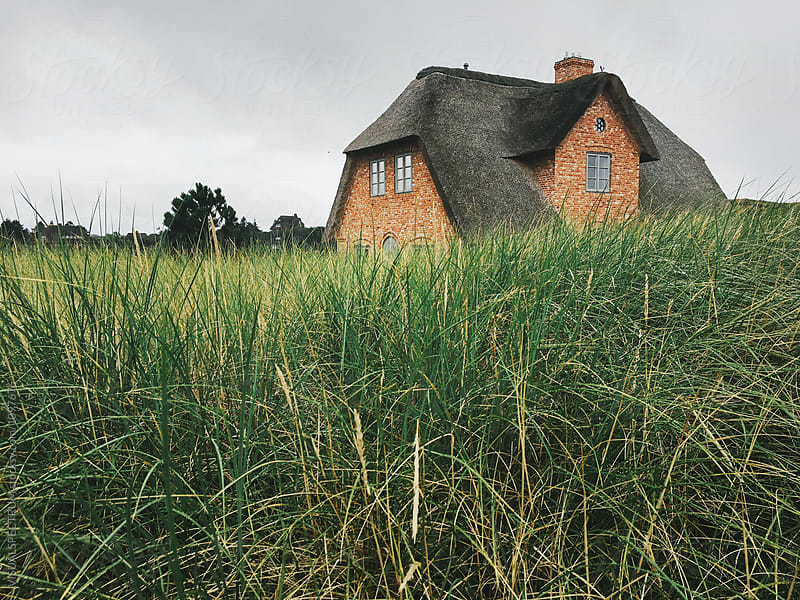 Nordic Thatched Roof House on Sylt (Germany) by Julien L. Balmer for Stocksy United