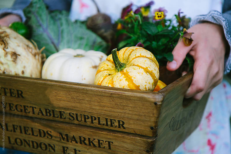Wooden box of seasonal autumnal vegetables and flowers. by Helen Rushbrook for Stocksy United