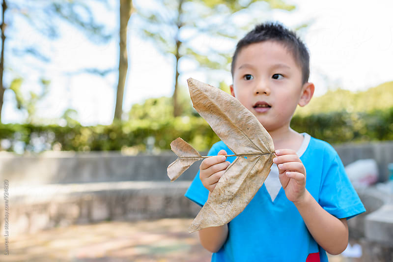 little asian boy holding airplan made by dry leaf by Lawren Lu for Stocksy United