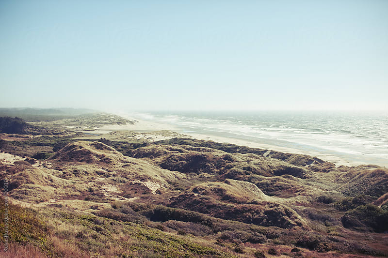 Oregon Coastal Scene by Kevin Russ for Stocksy United