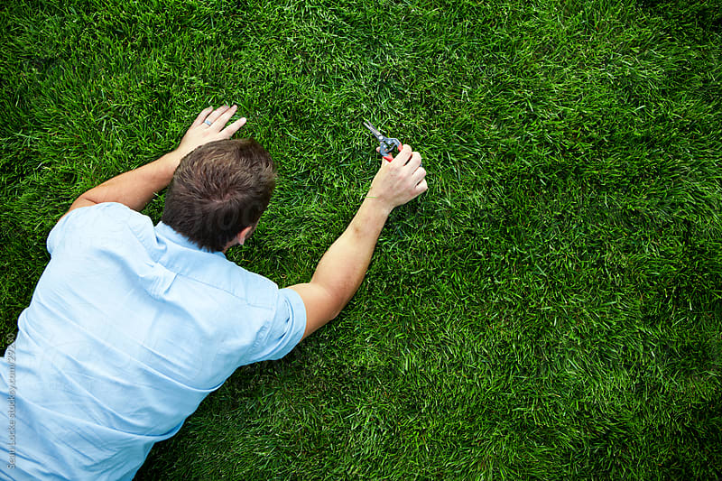 Grass: Man Using Clippers to Cut Grass Carefully by Sean Locke for Stocksy United
