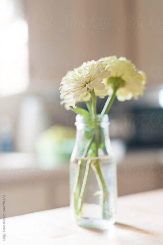 White Zinnias in A Glass Jar on A Butcher Block Counter by Leigh Love for Stocksy United