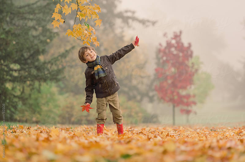 Boy holding red leaf in Autumn / Fall scene by Rebecca Spencer for Stocksy United