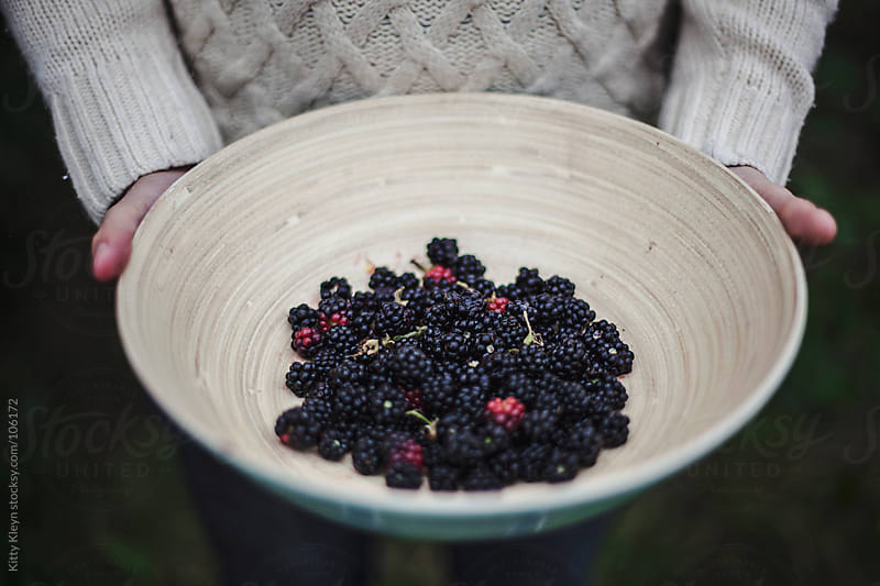 A bowl of berries by Kitty Kleyn for Stocksy United