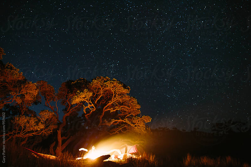 Campfire under a large tree by Gary Parker for Stocksy United