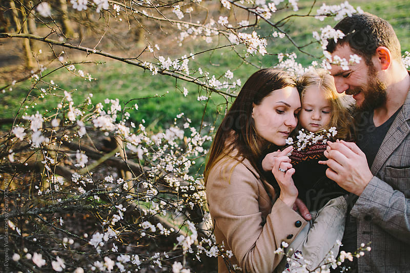 Family under the blossom tree   by Evgenij Yulkin for Stocksy United
