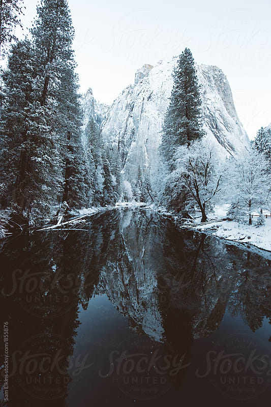Snowy Refection by Sam Elkins for Stocksy United