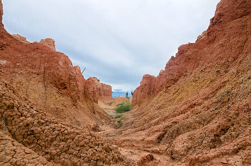 Stunning view to canyon in Tatacoa desert  by Alice Nerr for Stocksy United