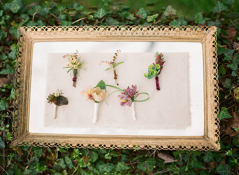 Tray of floral boutonnieres by Marta Locklear for Stocksy United