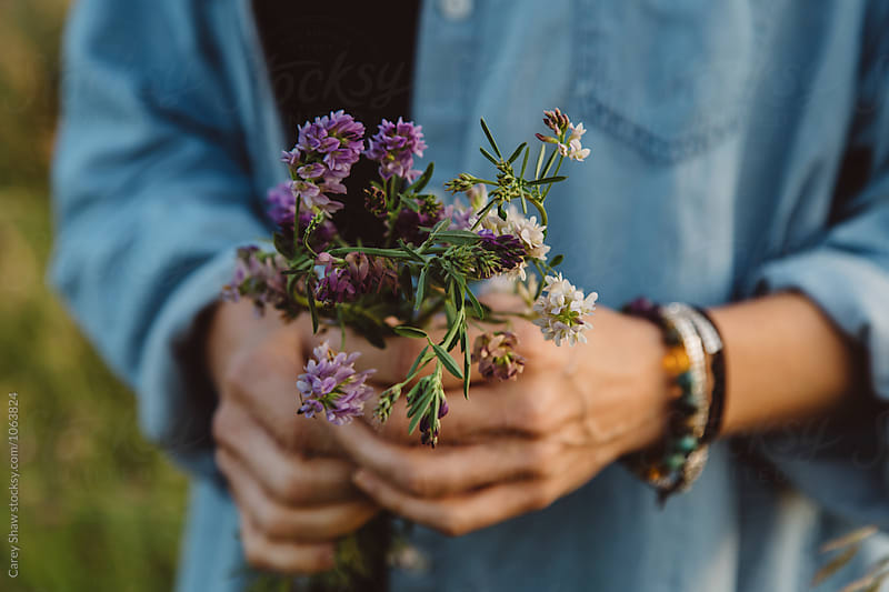 Hands holding purple and white wildflowers by Carey Shaw for Stocksy United