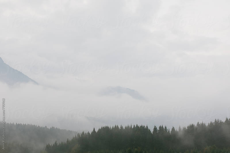 Misty austrian landscape by Amir Kaljikovic for Stocksy United